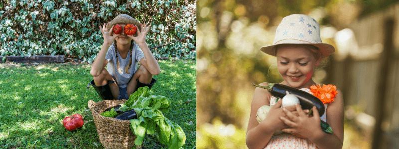 When the Food System Meet Sustainability